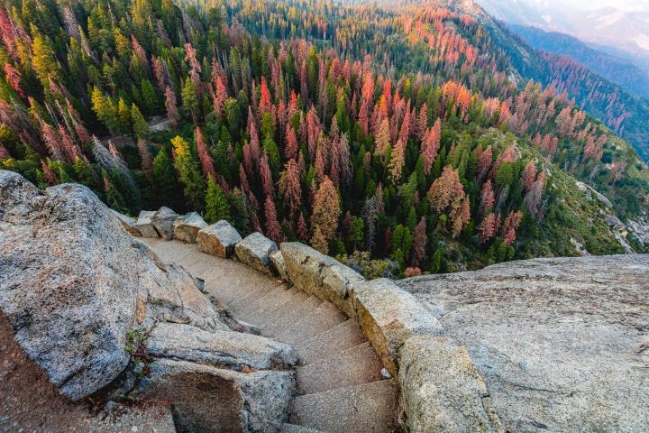 AGP Favorite, California, Fall Colors, North America, Sequoia National Park, Travel, United States, Yosemite National Park