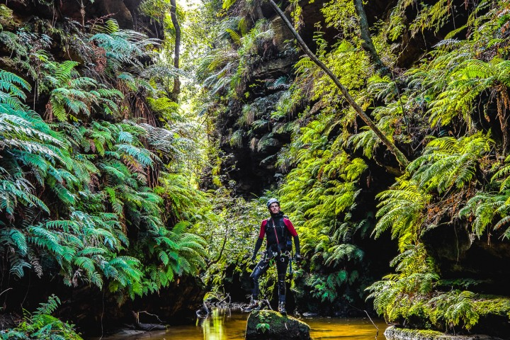 Abseiling, Australia, Blue Mountains, Canyoning, Travel