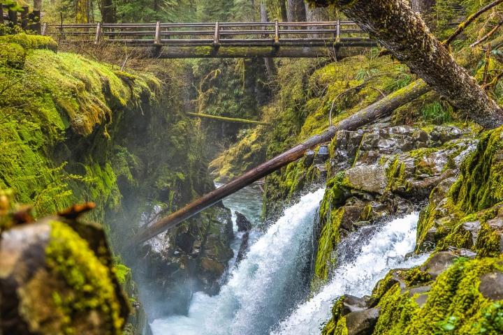 Hoh Rainforest, North America, Olympic National Park, Seattle, Travel, United States, Washington, Waterfall