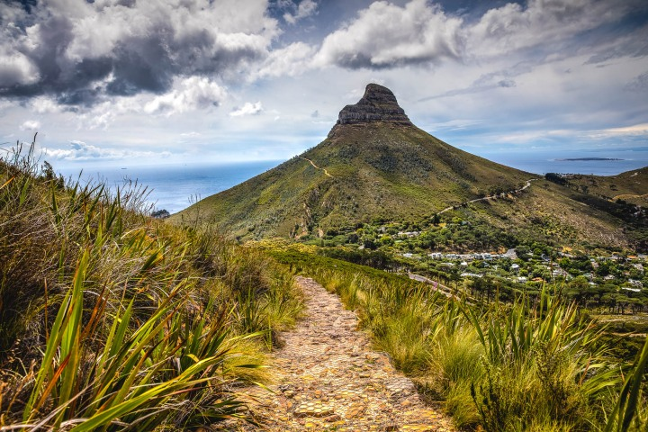 Africa, AGP Favorite, Cape Town, Lions Head, South Africa, Travel