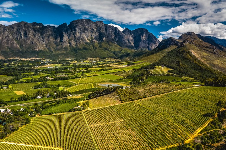 Aerial Photography, Africa, Cape Town, South Africa, Travel, Vineyard