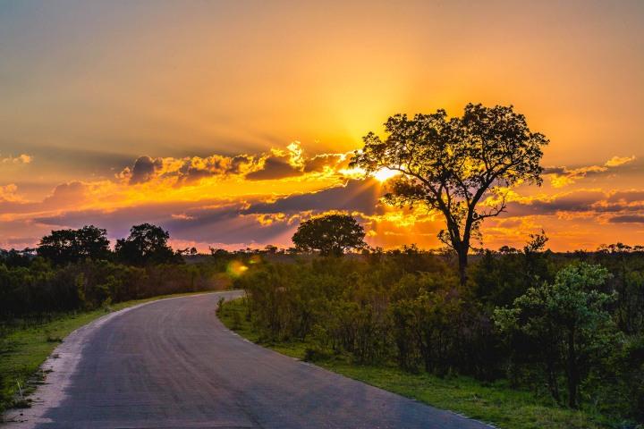 Africa, AGP Favorite, Kruger National Park, Safari, South Africa, Sunset, Travel