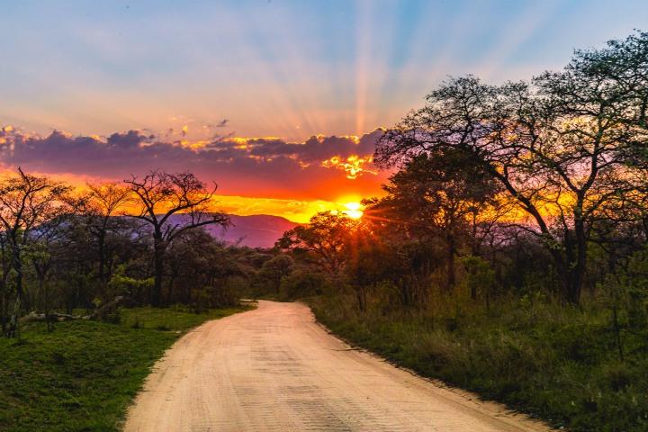 Africa, Kruger National Park, Safari, South Africa, Sunset, Travel