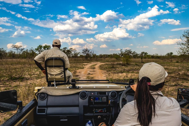 Africa, Kruger National Park, Safari, South Africa, Travel