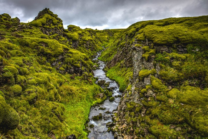 Europe, Fjord, Hólaskjól, Iceland, Travel, volcanic lava field