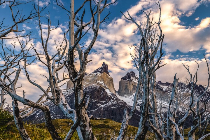 AGP Favorite, Chile, Mountains, Patagonia, South America, Torres del Paine, Travel