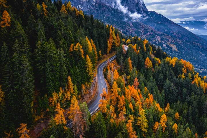 AGP Favorite, Autumn, Dolomites, Europe, Fall Colors, Italy, Seis am Schlern, Siusi, South Tyrol, Travel