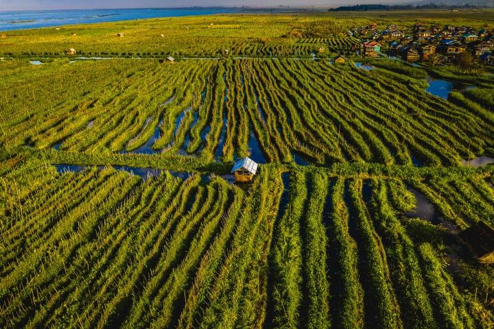 Aerial Photography, AGP Favorite, Asia, Burma, Floating Garden, Inle Lake, Myanmar, Travel
