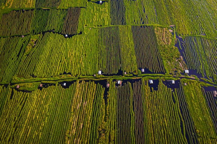 Aerial Photography, AGP Favorite, Asia, Burma, Floating Garden, Inle Lake, Myanmar, Travel