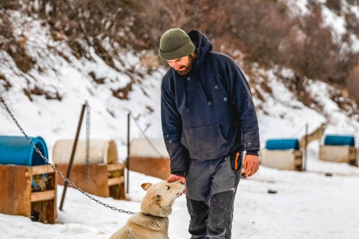 AGP Favorite, Dog Sledding, North America, Park City, Snow Covered, Travel, United States, Utah