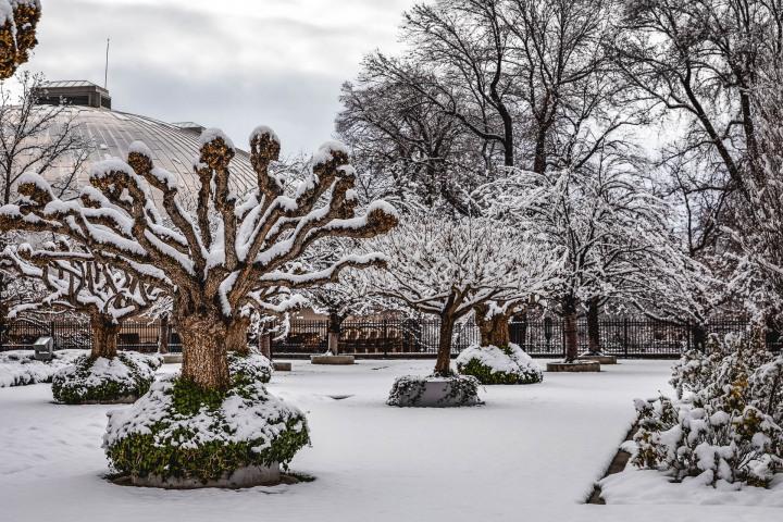 AGP Favorite, North America, Park City, Salt Lake City, Snow Covered, Temple Square, Travel, United States, Utah