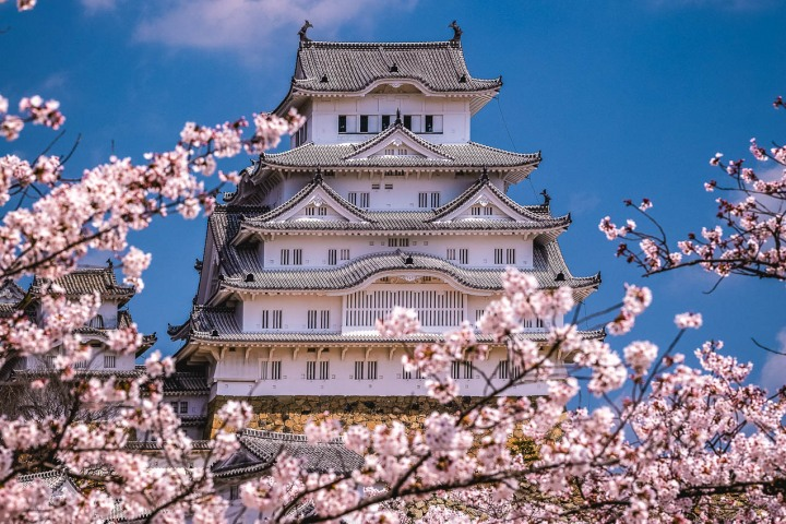 AGP, AGP Favorite, Alex G Perez, Asia, Cherry Blossoms, Himeji, Himeji Castle, Japan, Landscape Photography, Sakura, Spring, Temple, Travel, www.AGPfoto.com