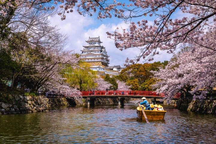 AGP, AGP Favorite, Alex G Perez, Asia, Cherry Blossoms, Himeji, Himeji Castle, Japan, Sakura, Spring, Temple, Travel, www.AGPfoto.com