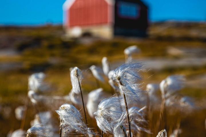 AGP, AGP Favorite, Alex G Perez, Arctic Circle, Fishing Village, Greenland, Ilulissat, Landscape Photography, North America, Oqaatsut, Travel, www.AGPfoto.com